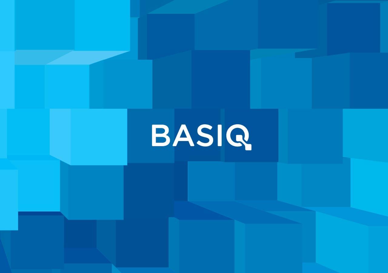 Basiq brand pattern