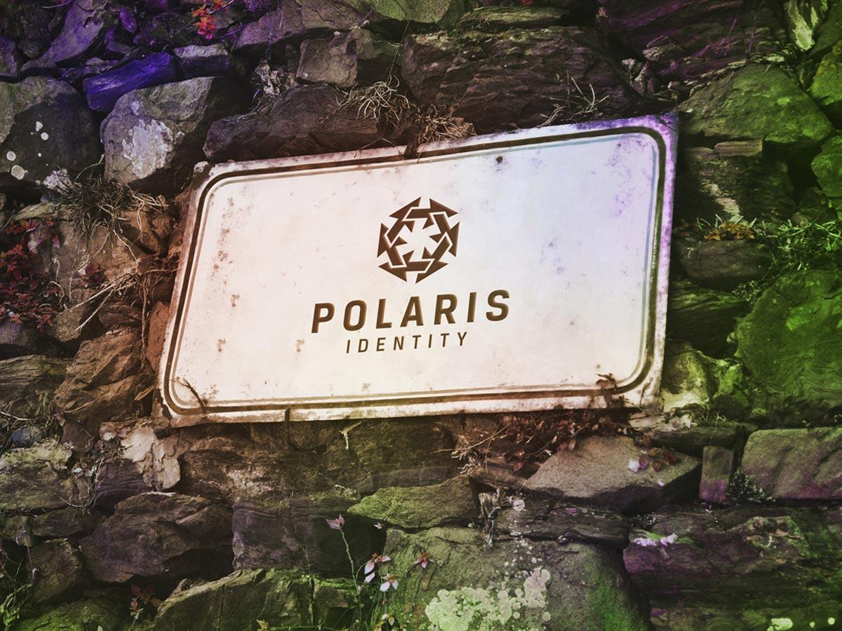 Polaris identity application