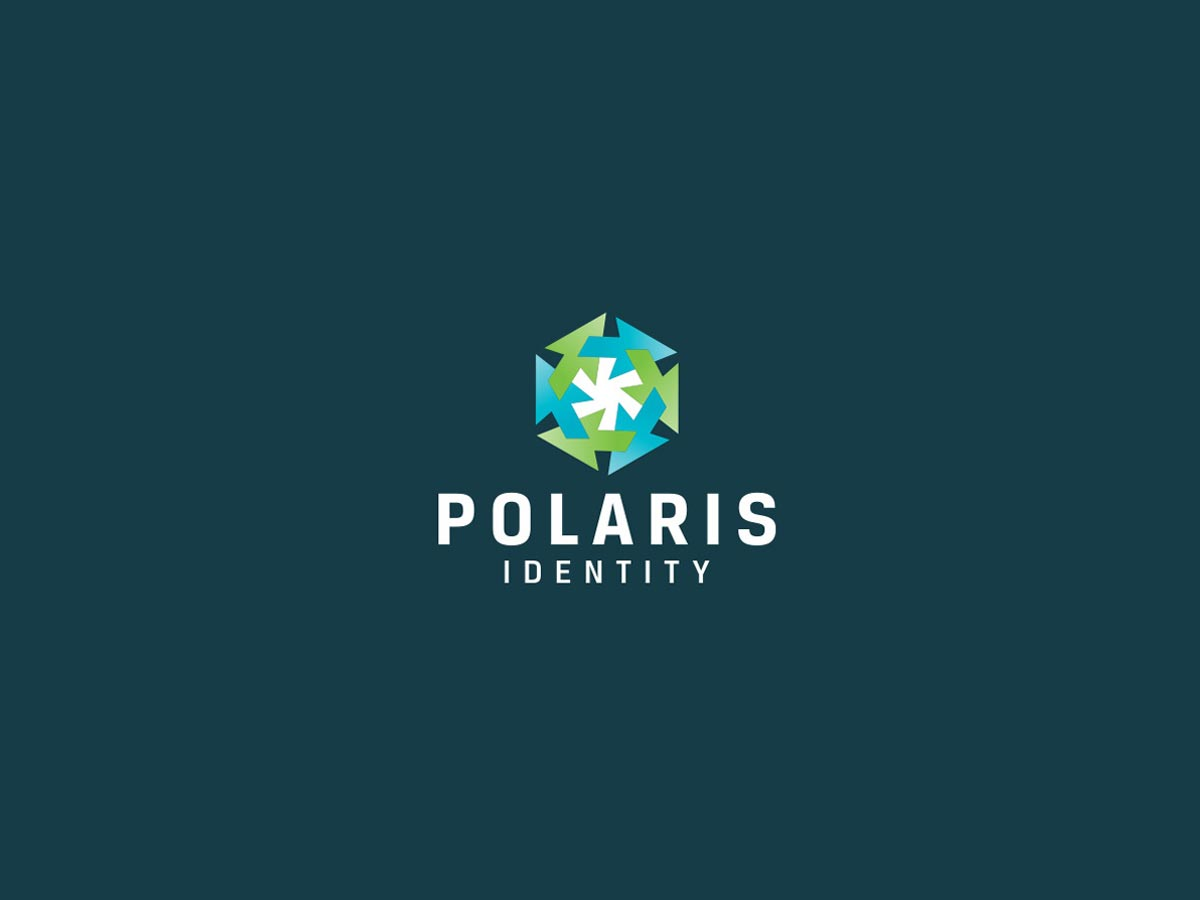 Polaris identity logo2